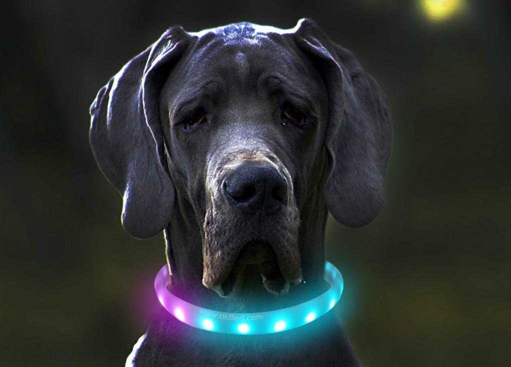 aidi best RGB led dog collar