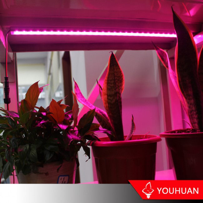 2017 Popular Style SMD2835 Led Plant Light For Greenhouse
