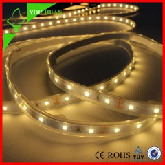 Factory direct sale and favourable price ip65 silicone tube waterproof smd5050 led strips