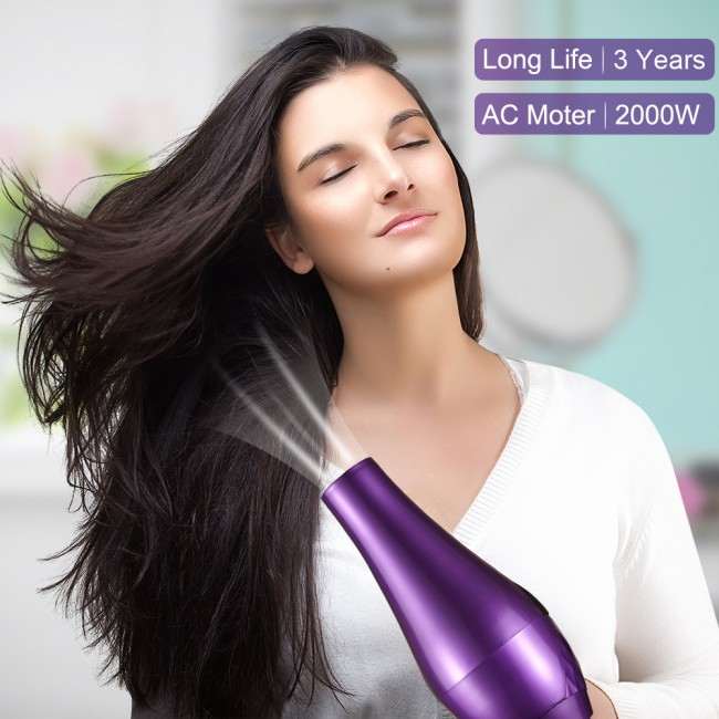 Electric Hair Dryer Blow Dryer Hair Ovonni AC HAIR DRY Hairdryer Hairstyling Tools Power Hair Dryer for Hairdressing Dryer Fan