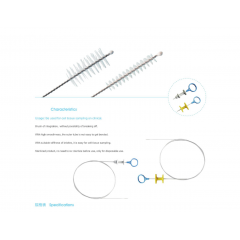 Endoscopic Cytology Brush