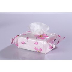 Makeup Remover Wipe /High Quality Oil Free Cleansing Facial Wipes