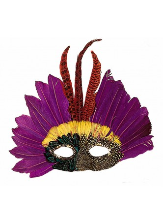 Carnival-accessories-feathers-mask