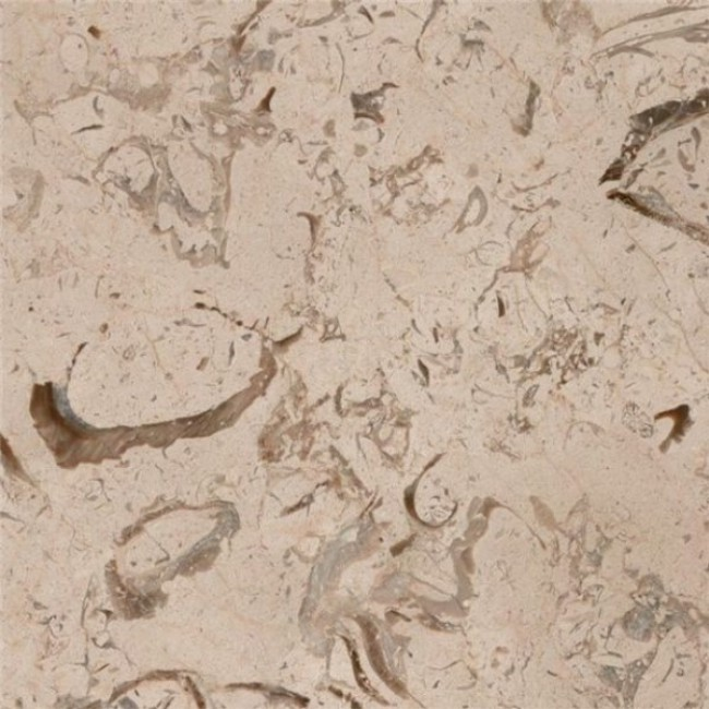 Fossil  beige marble