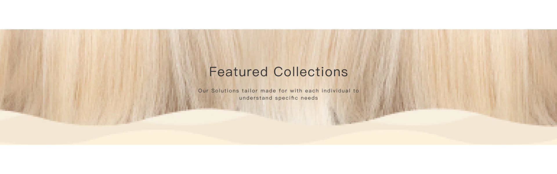 Transparent Lace Wig Catalog