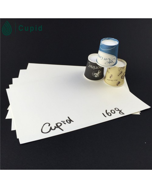 160gsm PE Coated Paper in Sheets